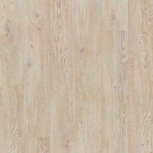 bodenschatz-calgary-pine