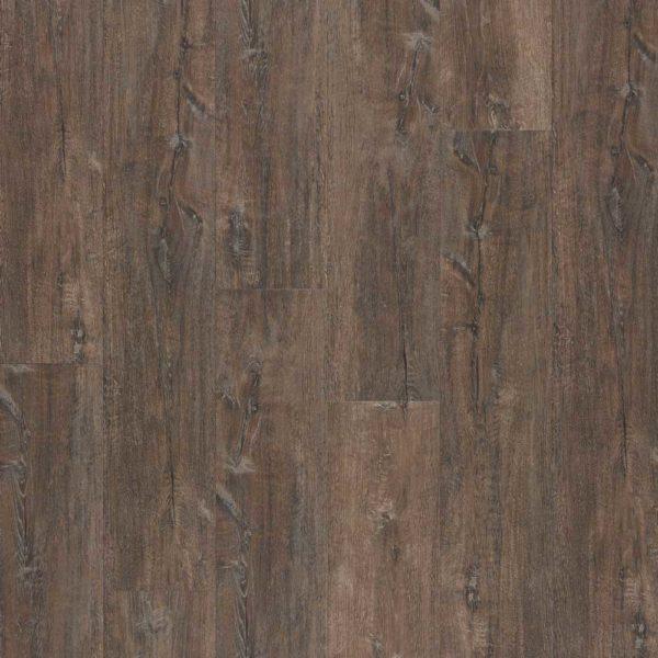 bodenschatz-hamilton-oak