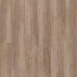 bodenschatz-toronto-oak