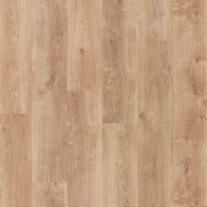 bodenschatz-vancouver-oak