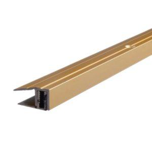 repac-profil-plp-abschluss-gold