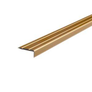 repac-profil-sk-abschluss-23-8-gold